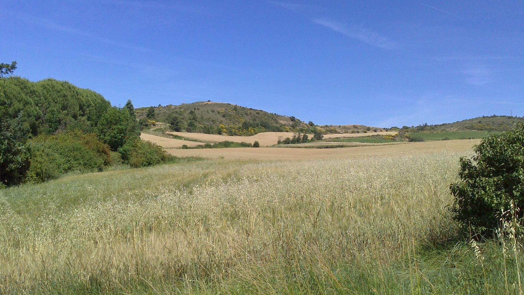 l'Esquirol, Aude - photo #4