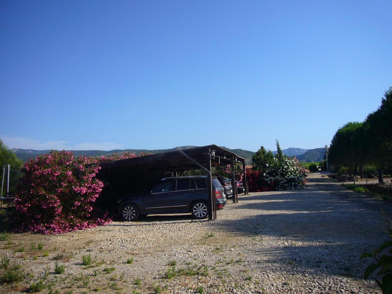 Domaine Condamines - Amellau, Hérault - photo #25