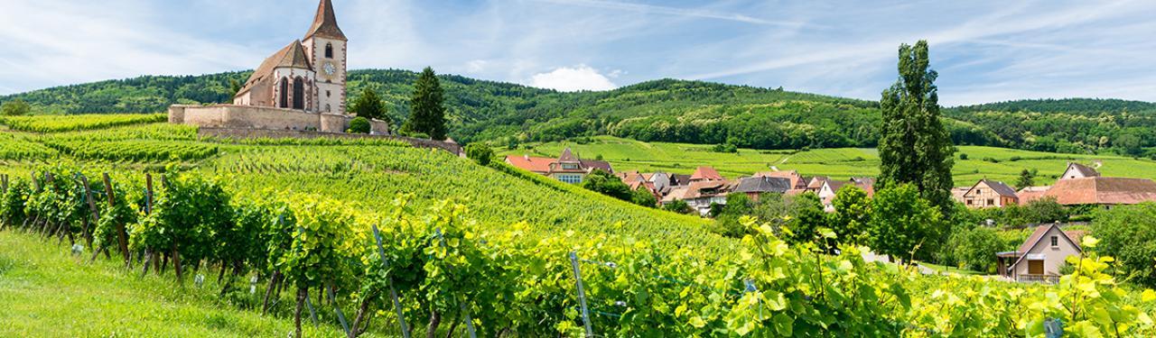 Location De Vacances Haut Rhin Gîtes De France